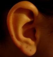 Usłyszeć świat