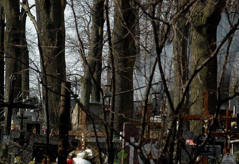Pożar na cmentarzu