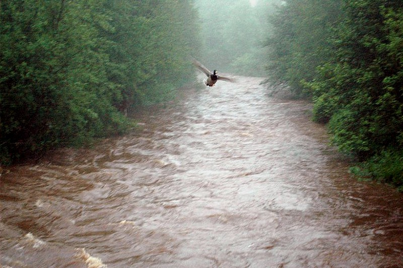 Fotoraport po kolejnym dniu opadów