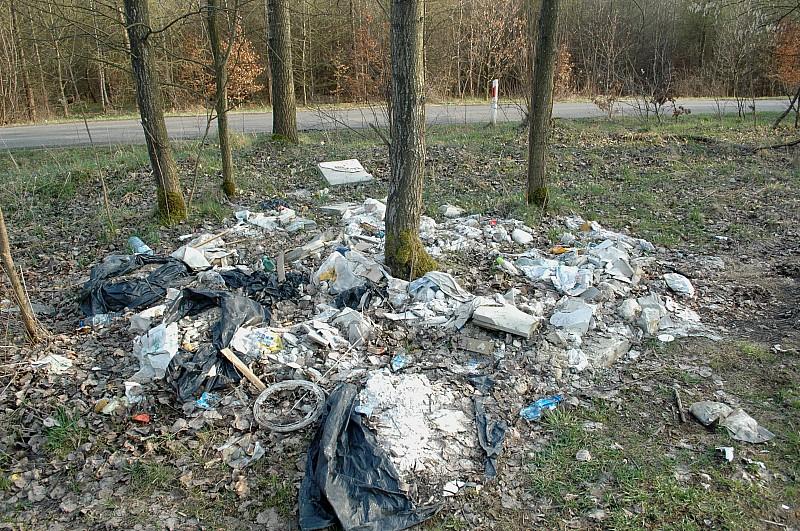 Sprzątanie Świata - Wałbrzych 2011