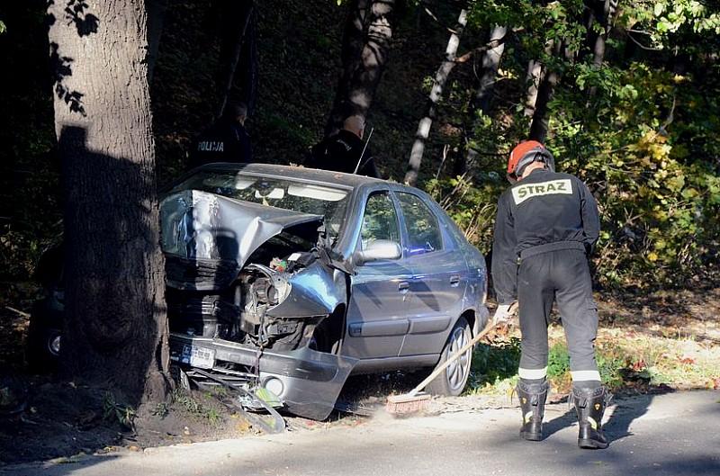 Skończył jazdę na drzewie - zdjęcia