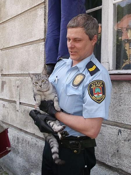 Uratowali uwięzionego kota