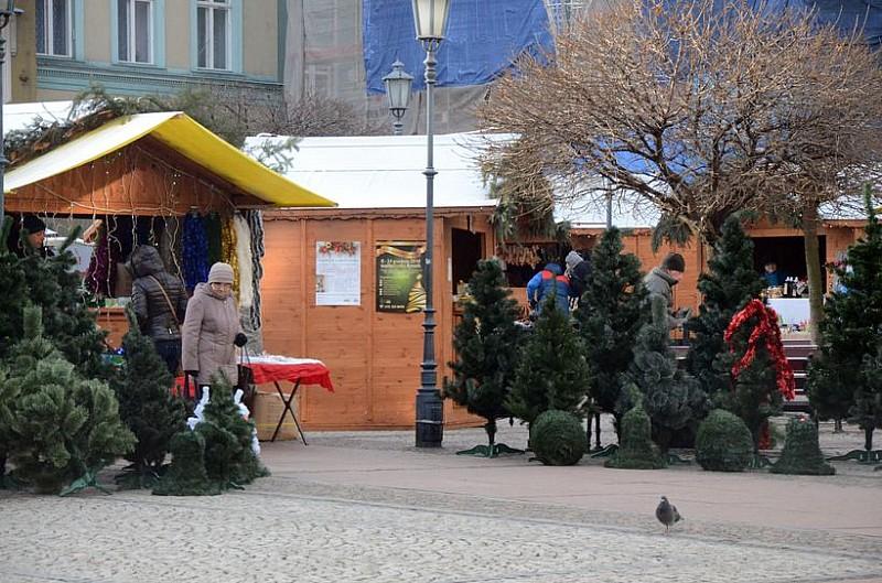 Świątecznie w Rynku